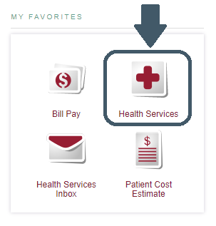 Screenshot of Health Services Favorite Icon